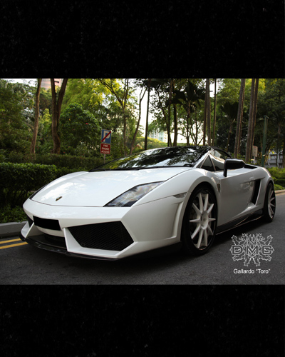 BODY LIP CARBON MẪU DMC LAMBORGHINI GALLARDO LP560